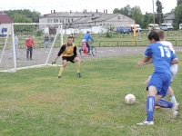 Областные летние сельские спортивные игры Брянской области